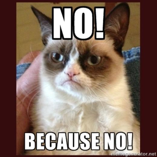 Chú mèo Tardar Sauce từng nổi tiếng trên mạng