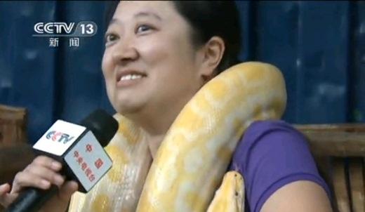 Nhân viên sở thú cũng sẽ cho bạn làm quen thích ứng từ từ với những chú trăn bằng cách cho một chú trườn lên người bạn