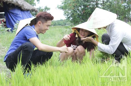 Sơn Trà – Quốc Bảo nhận được chủ đề'Một ngày trồng lúa'