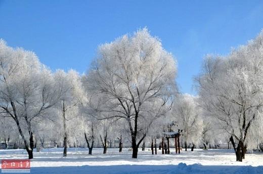 Với độ cao trung bình khoảng 1200 – 1300m, đỉnh cao nhất đạt tới 2035m, nên toàn bộ cây cỏ nơi đây đều được phủ lên mình một lớp tuyết trắng dày đặc.