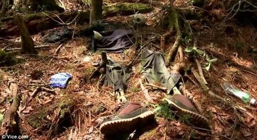 Rùng rợn khu rừng nghìn người tự sát ở Nhật