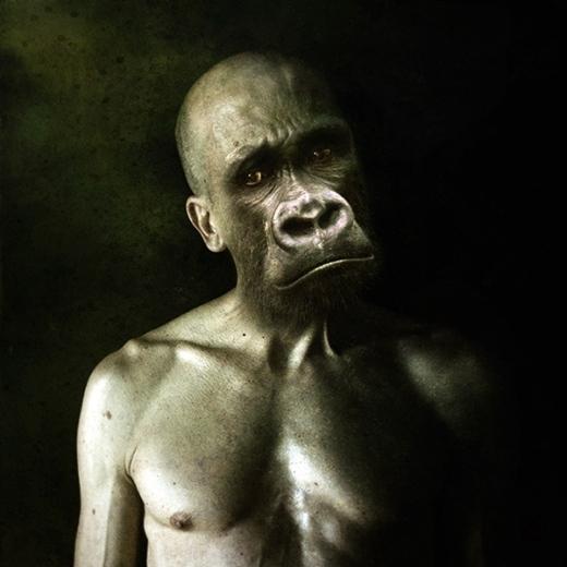 Người khỉ đầy biểu cảm