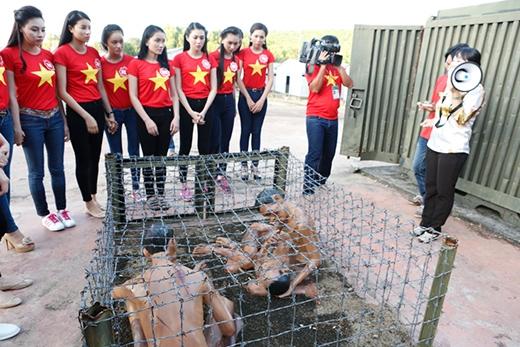 Các thí sinh đã được hướng dẫn viên đưa đi thăm quan ba khu nhà giam tiêu biểu, nơi các tù binh Phú Quốc đã phải chịu đòn roi tra tấn dã man. - Tin sao Viet - Tin tuc sao Viet - Scandal sao Viet - Tin tuc cua Sao - Tin cua Sao
