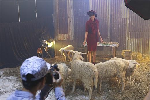 Top 12 Vietnam's Next Top Model lột xác ấn tượng bên những chú cừu