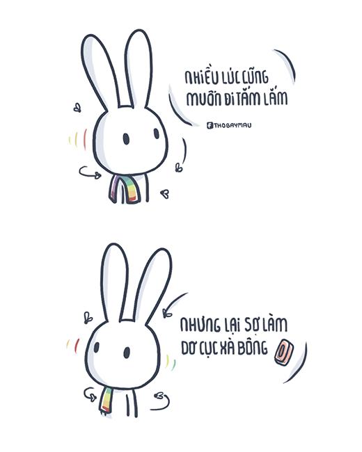 Giải mã cơn sốt Thỏ bảy màu khiến dân mạng phát cuồng