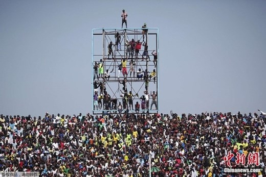 Ngày 11/11, rất nhiều CĐV đã mạo hiểm với tính mạng khi trèo lên cao để xem trận đấu giữa ĐT Congo và Bờ Biển Ngà.