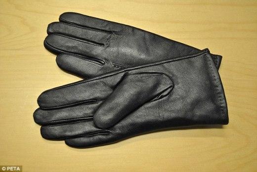 Một chiếc bao tay làm bằng da chó cực kì khó phân biệt với những bao tay da bò, da cừu