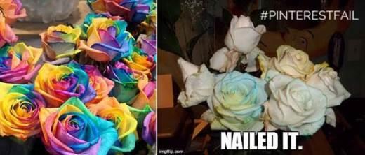 Có thật là ai đó đã nhuộm màu những bông hoa này rồi chứ?