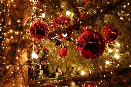Không khí Giáng Sinh khắp Đà Nẵng