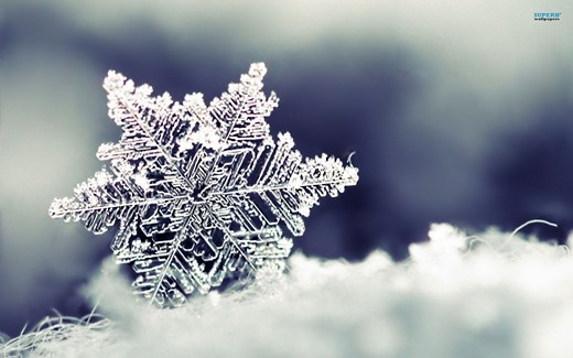 Những sự thật bất ngờ về tuyết không phải ai cũng biết