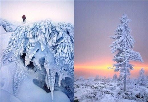 Những bức ảnh này được chụp tại vùng núi Ural, miền tây nước Nga.