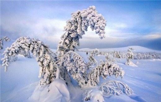 Do thời tiết khắc nghiệt, mọi thứ trên đỉnh núi đều bị băng tuyết bao phủ, tạo nên những hình ảnh đẹp mắt.