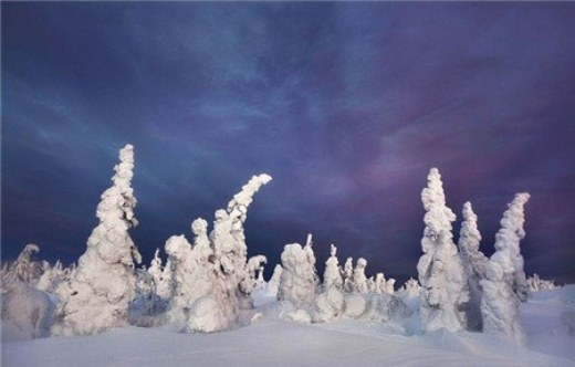 Nhiếp ảnh gia 45 tuổi cho biết để ghi lại những khoảnh khắc này, anh đã tốn nhiều thời gian và công sức vì không phải lúc nào băng tuyết cũng phủ đẹp vànuoc Nga