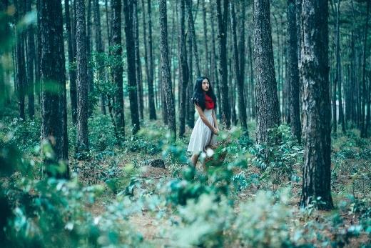 Huỳnh Anh, Hoàng Oanh làm thợ săn và cô bé quàng khăn đỏ