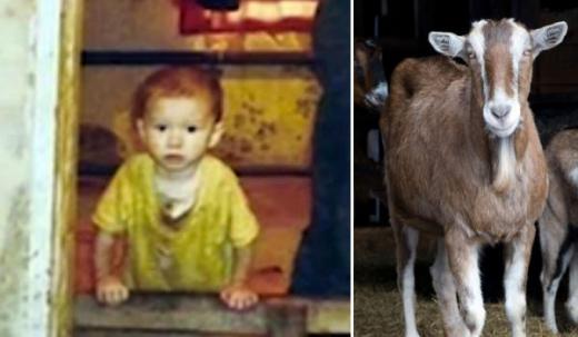 Tìm hiểu câu chuyện những đứa trẻ được động vật nuôi dưỡng