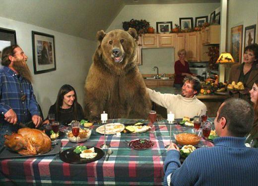 Chú gấu có tên Brutus có thật chứ không phải photoshop, được gia đình nuôi nhốt trong nhà