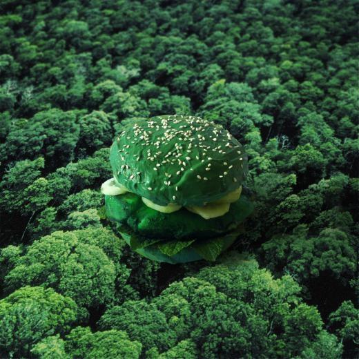 Burger Vì môi trường