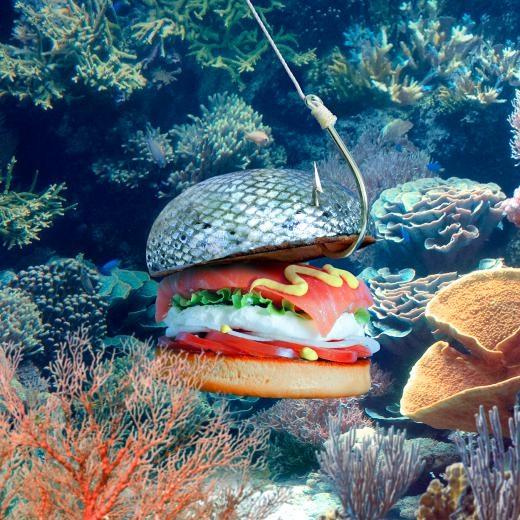 Burger Đại dương