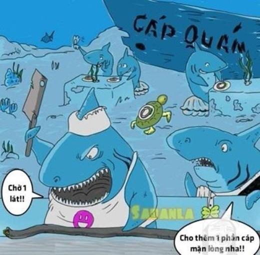 Các bác đầu bếp cá mập vẫn làm việc cực hăng say với đặc sản mới