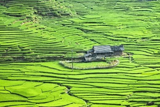 Báo nước ngoài giải mã 21 điều ai cũng sẽ yêu mến Việt Nam
