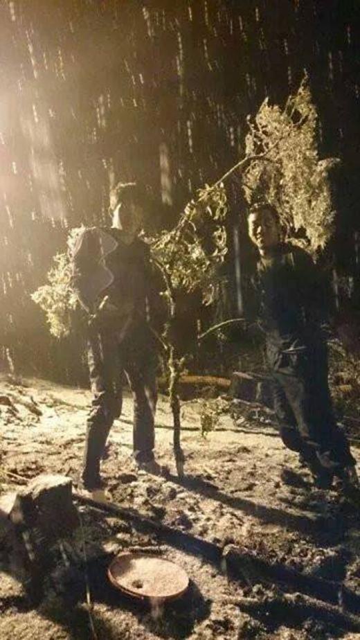 Hình ảnh tuyết rơi tại Trạm Tôn, Sa Pa trong đêm 9/1 (Ảnh: Ngong Hankang)