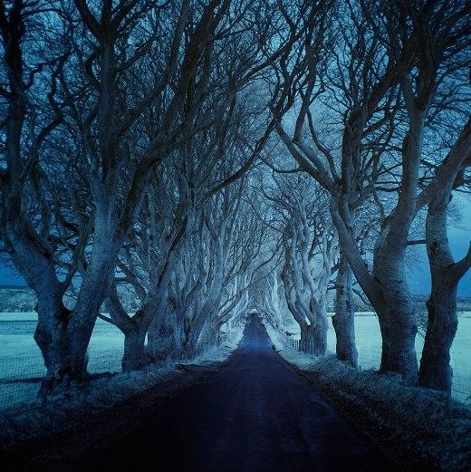 Những con đường dường như dài vô tận