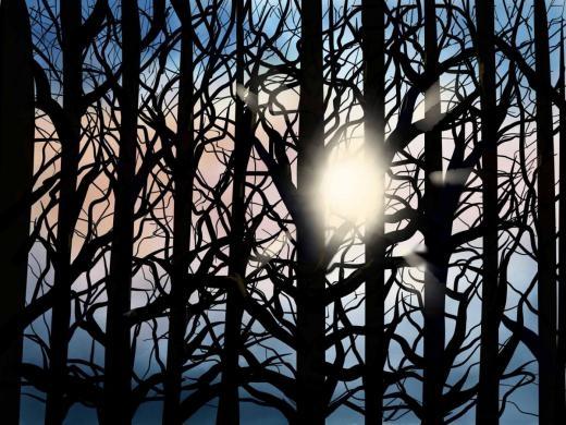 Miki Frueh sáng tạo hàng loạt tranh lấy chủ đề thiên nhiên.