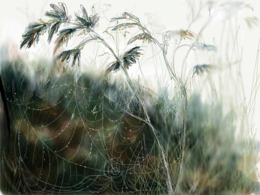 Mạng nhện siêu thực của Sylvia Lynch