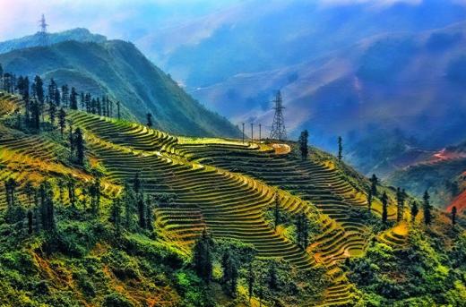 Ruộng bậc thang Lào Cai, nét độc đáo của vùng núi Tây Bắc - Ảnh: Amateur Pic
