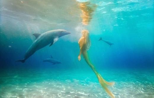 Quãng thời gian dưới biển đã giúp cho Mehina trở nên gần gũi và làm quen với rất nhiều sinh vật dưới đại dương