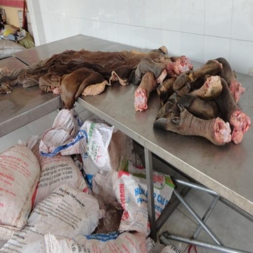 Gần 800 kg chân trâu bò hôi thối bị bắt (ảnh cơ quan chức năng cung cấp).