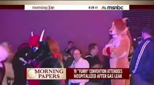 Hình ảnh kì quặc của những con thú kéo nhau ra khỏi khách sạn.