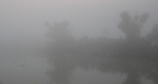 Rạng sáng 27/1, sương mù xuất hiện dày đặc ở các tỉnh Sóc Trăng, Hậu Giang, Cần Thơ, An Giang, Long An... Nhiều dòng sông sương mù vây kín, tầm nhìn xa chỉ còn khoảng 5 - 10m lúc 6h30.