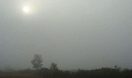 Đến 8h30 sương mù một số nơi ở An Giang, Đồng Tháp vẫn chưa tan dù mặt trời lên cao. Ba tuần trước ở miền Tây còn có hiện tượng mù vào buổi chiều như khói đốt đồng.