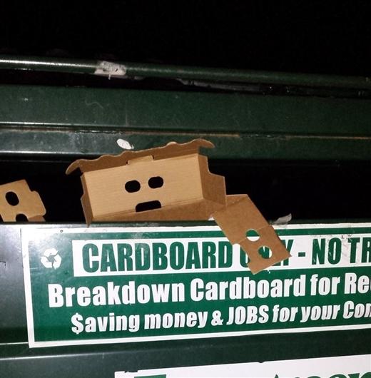 Chiếc hộp giấy đang nỗ lực chạy trốn trong tuyệt vọng