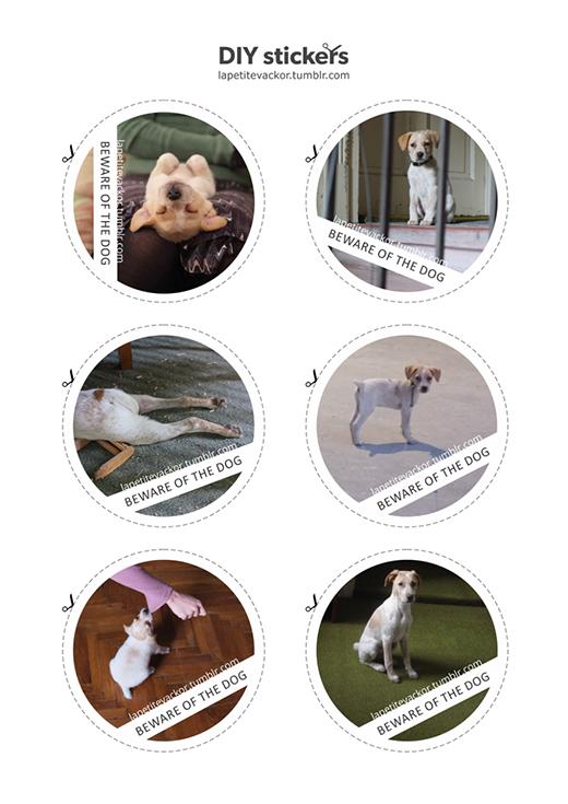 Cô chủ của Veckor đã làm các sticker vô cùng dễ thương về chú chó của mình.