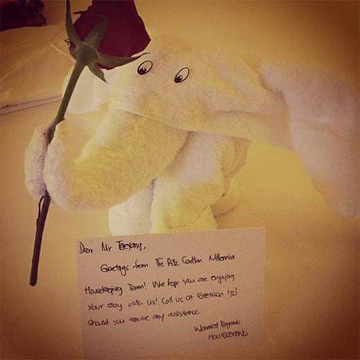 Taeyang thích thú khoe quà của người dọn phòng tặng cho anh tại Singapore: Thật là ngọt ngào, #hoa #voi #camon #hengaplai Singapore.