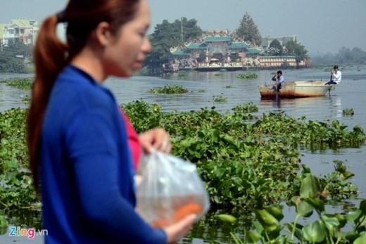 Chị An (ngụ đường Nguyễn Thái Sơn, quận Gò Vấp) đang chuẩn bị phóng sinh tại bến đò An Phú Đông trên sông Vàm Thuật, quận Gò Vấp thì phía xa hai người chích cá tiến vào.