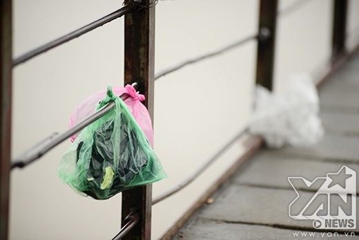 Mặc mưa rét, giới trẻ Hà thành quyết tâm kêu gọi thả cá, đừng thả túi nylon
