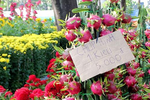 [Tết 2015] Dân Sài Gòn té ngửa vì chợ hoa thu phí... chụp hình