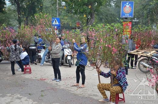 Tại chợ hoa Trần Nhân Tông (trước cửa Công Viên Lenin) vẫn còn khá nhiều người bán đào, quất, mai...