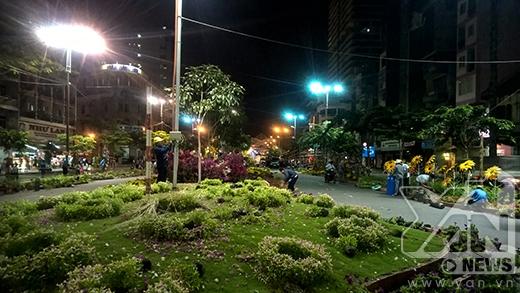 Cảnh hoang tàn dọn dẹp đường hoa Ất Mùi 2015