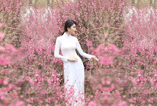 Hoa khôi thanh lịch 2014 duyên dáng với áo dài xuân