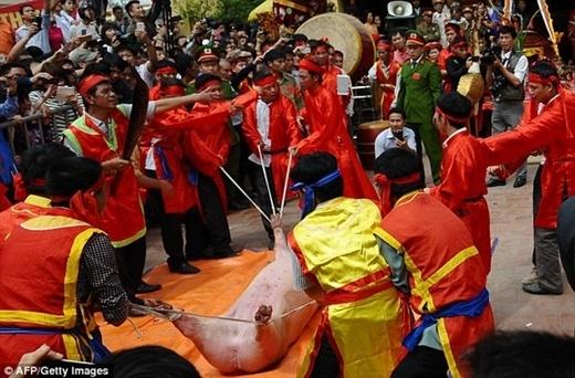 Tờ AFP cũng đưa tin về lễ hội này.