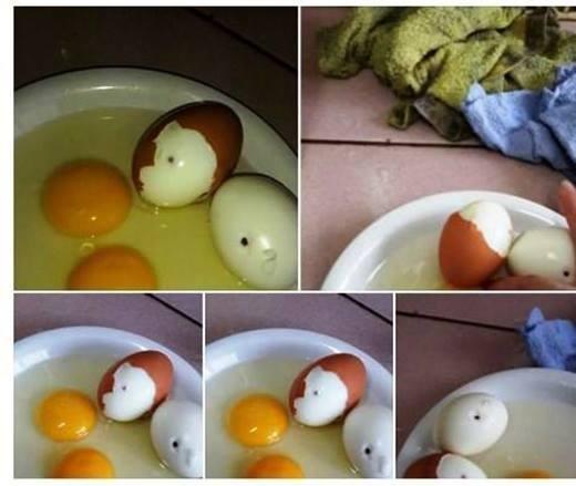 Thực hư tin đồn trứng gà bị tiêm máu HIV
