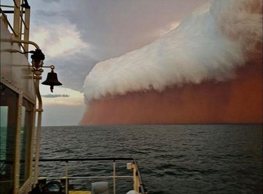 bão bụi
