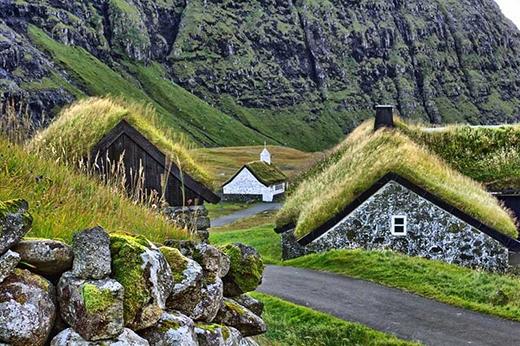 Những mái nhà phủ đầy màu xanh ở một ngôi làng trên đảo Faroe.