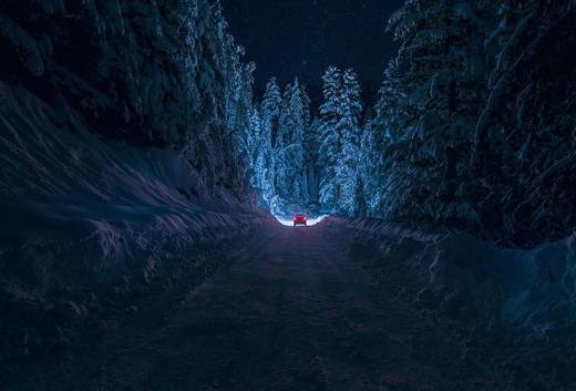 Con đường đi xuyên qua rừng cây phủ đầy tuyết trắng ở dãy núi Rila, Bulgari.
