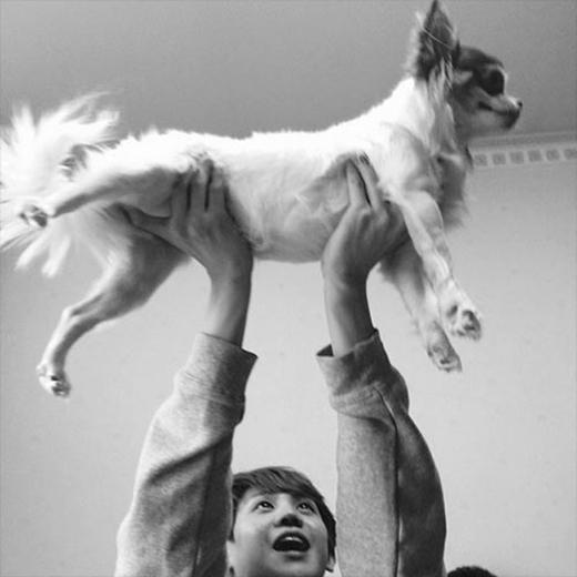 Yoseob bất ngờ đăng hình ngộ nghĩnh khi anh bế thú cưng và chia sẻ: Thật là kỳ lạ mà.