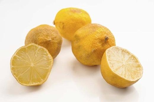 Nếu như trái chanh của bạn sắp hư, hãy cắt đôi chúng và bỏ vào thùng rác để giảm mùi hôi trong thùng rác.